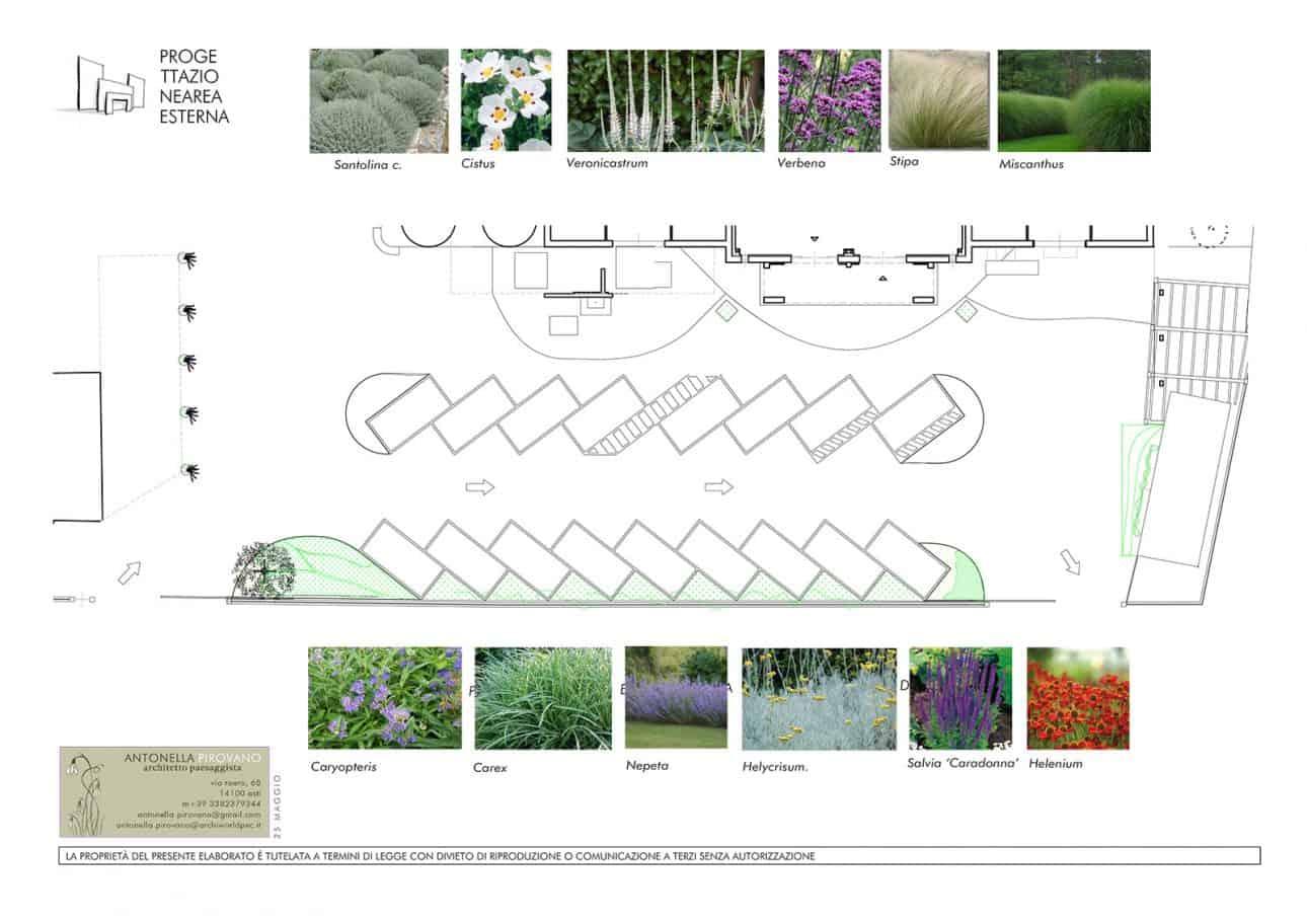 170324_ap_cdn_corte_verde_plan