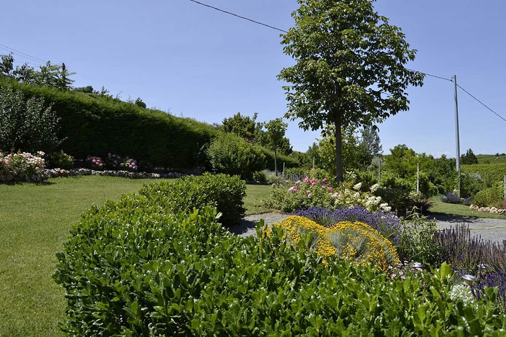 Ampliamento di giardino in collina